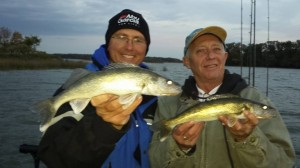 Walleye Clear Lake 10-17